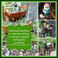 See the collection! Click on http://ourfairfieldhomeandgarden.com/charmed-gardens-a-collection-of-fairy-miniature-garden-making-tips/