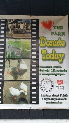 Help our farm...Donate today