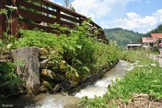 Bucovina Garden Bridge, Romania, Places To See, Paradise, Outdoor Structures, Spaces, Country, Heart, Photography