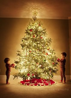 One of these years I will have a tree like this!