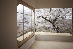 Floating Architecture - Terunobu Fujimori