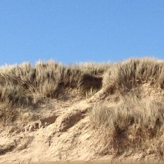 The dunes at Sea Palling The Dunes, Norfolk, United Kingdom, Sea, Outdoor, Beautiful, Outdoors, England, The Ocean