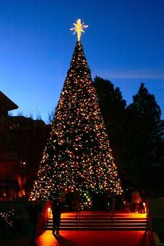 """5 Best Christmas Light Displays In Georgia"" via Green Global Travel."