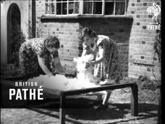 Very Doggy!! (1940) - YouTube. Shows the step by step process of making yarn and then socks from dog fur.
