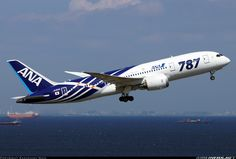 All Nippon Airways - ANA JA801A Boeing 787-8 Dreamliner aircraft picture