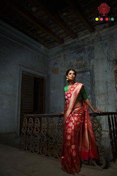 Coloroso Banarasi Saree