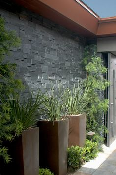 Tall pots instead of planter boxes leading to entry. Boulder Ridge by Christopher Homes. Colours oft house.