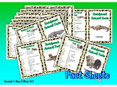 THE RAINFOREST- 19 A5 fact sheets (A4 folded) with clear information about each animal for a Reading Corner, Topic Board or Writing Corner