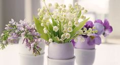Hollowed-out eggshells make naturally beautiful vases for tiny flower arrangements.