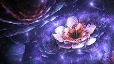 Nymphaea Rosea by teundenouden on DeviantArt