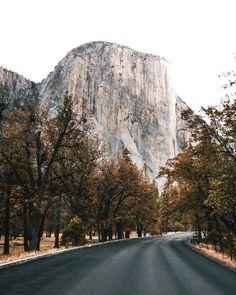 The road often traveled.