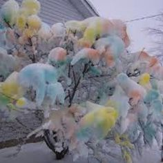 Cotton candy tree! I WISH!
