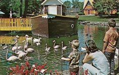 Conneaut Lake park | Conneaut Lake Park • Findery