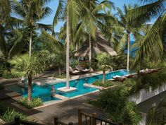 Find privacy in paradise amid @Four Seasons Resort Koh Samui, Thailand's lush palms. #FSResorts
