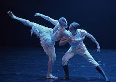 Matthew Bourne's Swan Lake: Edward Watson & Liam Mower