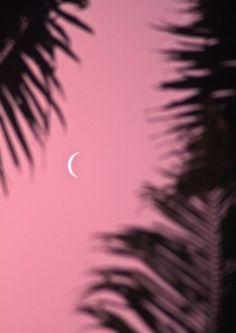pink moon swim http://www.nomad-chic.com/swim.html