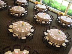 Guest tables from above.