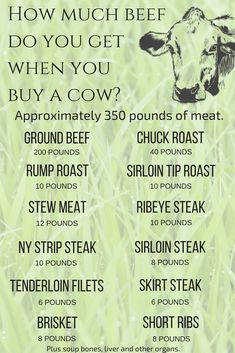 a Cow: How Much Meat Will You Get? (And What to Do with It How much beef do you get when buying a cow? Amount of beef by cut or type of meat.How much beef do you get when buying a cow? Amount of beef by cut or type of meat. Sirloin Tip Roast, Beef Chuck Roast, Beef Tenderloin, Roast Brisket, Sirloin Steaks, Pork Roast, Buy A Cow, Ny Strip Steak, Cattle Farming