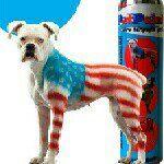 Dog dye dog costumes dog paint.