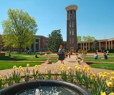 Belmont University, Nashville, TN, March, 2015.