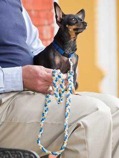 Free Crochet Pattern -- Chain-Stitch Dog Leash