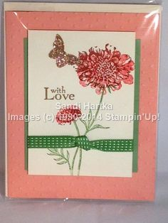 Stampinup hand stamped greeting card oh hello bitty butterfly stampinup hand stamped greeting card oh hello bitty butterfly sandis cards pinterest stampin up butterfly and cards m4hsunfo