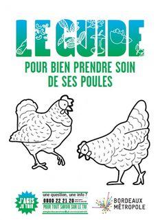 LE GUIDE pour bien prendre soin de ses poules -  Un outil créé dans le cadre d'une expérimentation menée dans plusieurs villes par Bordeaux Métropole