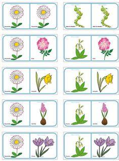 Dominos des fleurs de printemps et d'été - planche à imprimer Spring Activities, Preschool Activities, Busy Boxes, Cicely Mary Barker, Plantation, Dominos, Pre School, Spring Flowers, Kids And Parenting