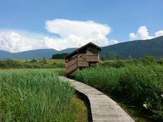 Fiavè - Trentino - Italy