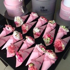 flowers, happy, morning, pink, roses