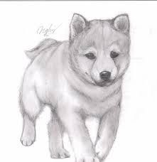 Pencil Sketches Of Animals, Dog Pencil Drawing, Realistic Animal Drawings, Puppy Drawing, Cute Animal Drawings, Drawing Art, Love Drawings Tumblr, Cute Drawings Of Love, Art Drawings Sketches Simple
