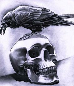 Crow Tattoo Designs | Crow Tattoo Designs