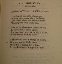 loveliest of trees poem meaning