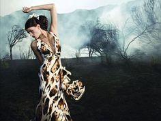 Roberto Cavalli fw 2008/09 ad campaign