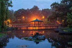 Japanese garden wrocław