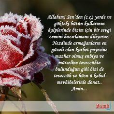 Hayırlı Cumalar…  Allahım! Sen'den (c.c), yerde ve gökteki bütün kullarının kalplerinde bizim için bir sevgi zemini hazırlamanı diliyoruz. Nezdinde armağanların en güzeli olan kurbet payesine mazhar olmuş enbiya ve mürselîne teveccühte bulunduğun gibi bizi de teveccüh ve hüsn ü kabul mevhibelerinle donat.. Amin... #sizintidergi #cumadua #gul #rose #islam #pray #kirikdilekce #book #nature #cicek #flower #guzelsozler #sentences
