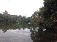 Parque do Ingá, Maringá-PR, Brasil