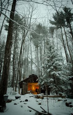 Cabin in the snowy woods