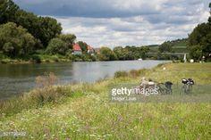 Sommerhausen, near Ochsenfurt, Franconia, Bavaria, Germany... #sommerhausen: Sommerhausen, near Ochsenfurt, Franconia,… #sommerhausen