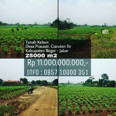 Tanah Kebun Desa Prasasti Ciaruten Ilir Kabupaten Bogor