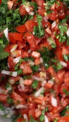 Canned Salsa Recipes, Best Salsa Recipe, Mexican Salsa Recipes, Tomato Salsa Recipe, Fresh Tomato Recipes, Lunch Recipes, Appetizer Recipes, Vegetarian Recipes, Dinner Recipes