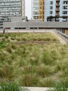 How To Construct A Green Roof #pchtips