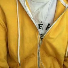 Yellow Jacket.