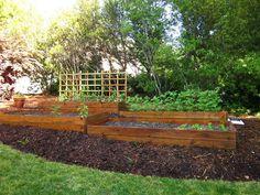 Terraced cedar framed raised beds terraced vegetable for Demaria landtech