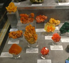 A hoard of wulfenite specimens. The two from the Red Cloud mine were collected by Ed Over in the late 1930s.