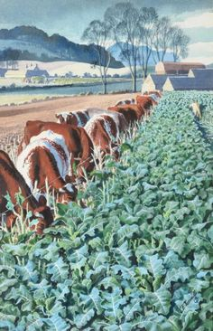 Charles Frederick Tunnicliffe RA, RE, ARCA Cows feeding beside a field of kale Signed, watercolour heightened with white, by Estimate: - Spring Fine Art Sale March 2019 Ladybird Books, Field Of Dreams, Vintage Artwork, Painting Lessons, Natural History, Country Life, Art Paintings, Art For Sale, Farming
