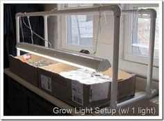 Grow lights Make your own grow-light setup! How Old Should You Be Before You Buy A Loft Bed? Grow Lamps, Growing Veggies, Veg Garden, Farm Stand, Seed Starting, Grow Lights, Sustainable Living, Country Life, Homesteading
