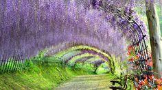 日本の美しい風景31選