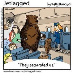 Finding A Cheap Ticket For Your Flight Aviation Quotes, Aviation Humor, Cartoon Jokes, Funny Cartoons, Flight Attendant Quotes, Airline Humor, Business Class Tickets, Cheap International Flights, Come Fly With Me
