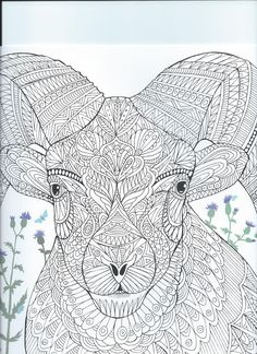 """From the coloring book """"The Menagerie"""" animal portraits to color"""